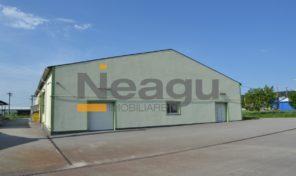 Neagu Imobiliare – Mioveni limitrof, DN73, Hala de Vanzare