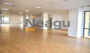 Neagu Imobiliare – Pitesti Ultracentral, spatiu administrativ birouri